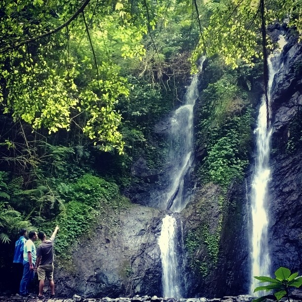 10 Wisata Alam Di Bogor Yang Asik Untuk Menghabiskan Waktu